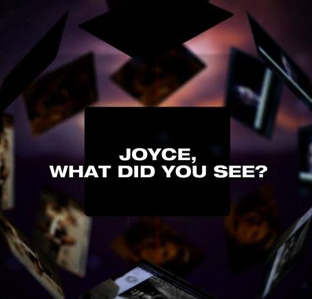 Joyceflash7