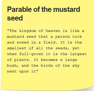 Mustard5